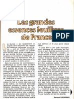 Essences Feuillues en France