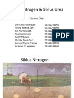 Siklus Nitrogen & Siklus Urea