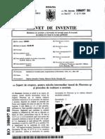 145431 Suport de Crestere Pentru Miceliu Intermediar Inocul de Pleurotus Sp Si Procedeu de Realizare a Acestuia 18803050