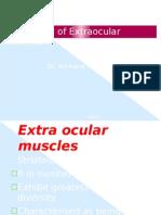 Eom Physiology Archana