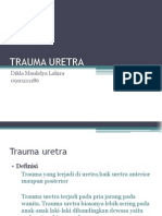 Trauma Uretra