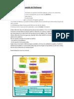 Procesos y Estructuras POLIMEROS
