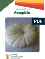 Prod Guide Pumpkins