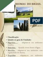 biomasdobrasil-110730070143-phpapp02