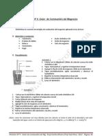 008 - Práctico 9-Calor de combustión del Mg