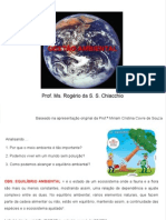 01-A Importancia Da Questao Ambiental