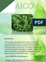 =) EXPO D FARMACO 3° FASE