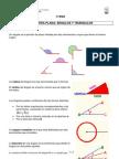 Vertices Clasificacion Triangulos