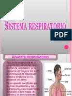 Sistema Respiratorio- Diapositivas 1