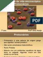 Diversidade da vida microscópica