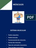 1D - Músculos