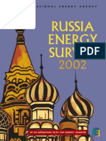 2002 IEA Russian Energy Survey