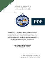 Tesis Salud Intercultural en Zonas Urbanas Norte de Chile.