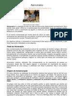 ACERCA_DE_COMEMORAR_O_ANIVERSÁRIO