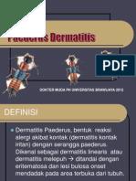 Dermatitis Paederus