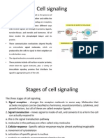 Cell Signaling - Imp