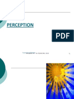 Perception(1)