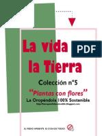 Plantas con flores-La vida en la Tierra Colección nº5