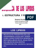 Bioquimica de Los Lipidos- Estructura -Arreglo