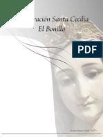 Informe  de restauración de Santa Cecilia