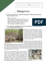 Mangroves - Level III