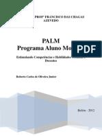 Palm - Final