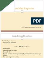 extremidadsuperior2-100826222132-phpapp02