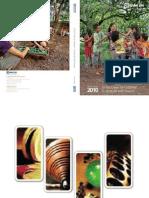 BRI 2010 Annual Report