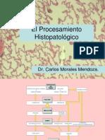 PRACTICA 1. El Procesamiento Histopatologico