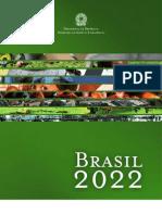 Livro Brasil 2022