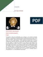 Coordenação_de_monografia - projeto de pos