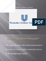 8376813 Product Life Cycle IIPS
