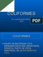 coliformes-1208127352460280-8