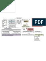 Mapa Conceptual Capitulo 1