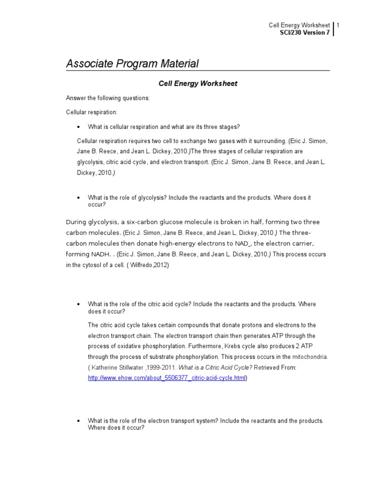 Cell Energy Worksheet | Cellular Respiration | Electron Transport Chain