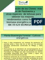 Planta Bioenergia Forestal- Presentacion Foro Santiago PARA WEB