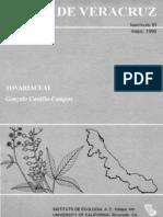 Veracruz Tovariaceae