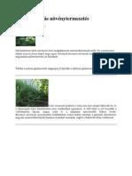 vegyeskultúrás növénytermesztés