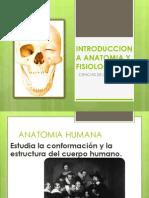 Intro Anatomia