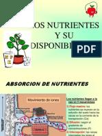 Los Nutrientesysu Disponibilidad Visita Melgar2907