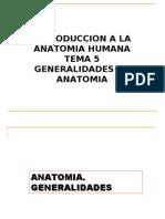 5-Anat Gral Resumen Final