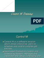 Control m Training