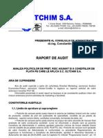 Raport Audit