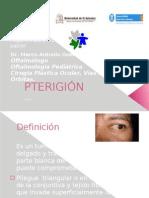Pterigión