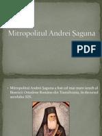 Mitropolitul Andrei Şaguna
