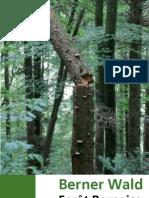Berner Wald 01-12