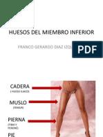 1. Huesos Del Miembro Inferior