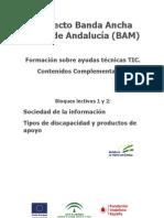 Uso_de_ayudas_técnicas_TIC_para_el_acceso_a_la_Sociedad_de_Información