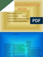 Elementos de La Estructura Textual