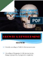 Post Natal Development of CB,Mx,Mn